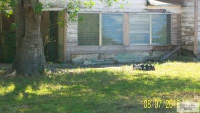 5305 E 14 1\/2 St., Brownsville, TX 78521 - #: 29713628
