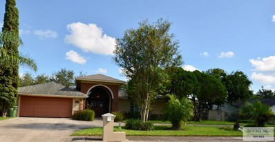 19 Summit Ct, Brownsville, TX 78521 - #: 29714226