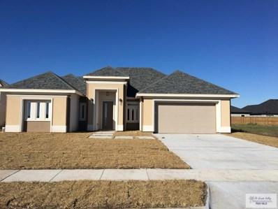 105 Hawk Ave., Los Fresnos, TX 78566 - #: 29719592
