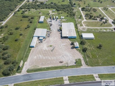 10164 Expressway 83, La Feria, TX 78559 - #: 29726131