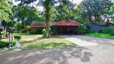 114 Trailwood, Enchanted Oaks, TX 75147 - #: 89176