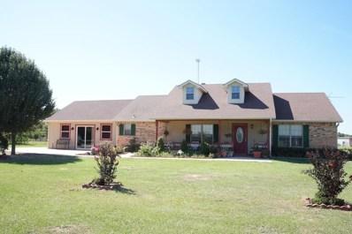 601 E Waller Road, Seven Points, TX 75143 - #: 89577