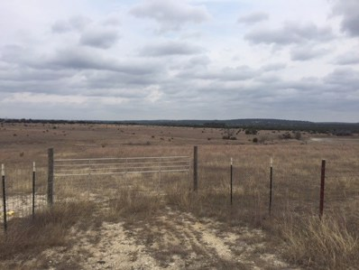Tbd County Road 2136, Lometa, TX 76853 - #: 143077