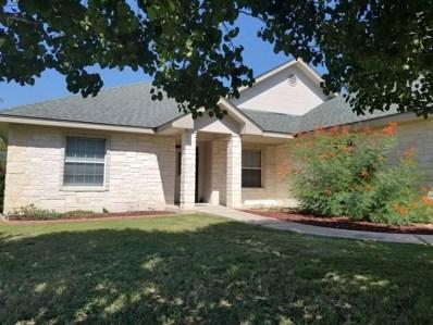 169 Chesterfield, Kingsland, TX 78639 - #: 144395