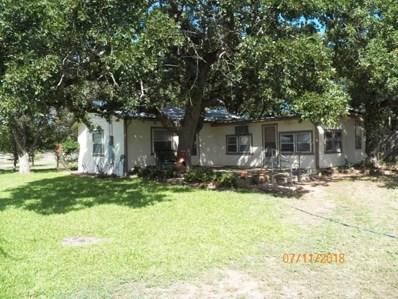 225 Cricket, Tow, TX 78672 - #: 144863
