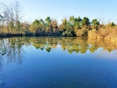 19-12-25 Rural Metes & Bounds, Fulton, AR 71838 - #: 20185237
