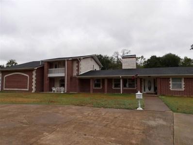 810 N Denman Rd, Overton, TX 75684 - #: 20195133