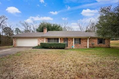 1509 Peterson Lane, Henderson, TX 75654 - #: 20210505