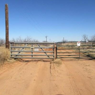 100 Red Springs Drive, Roaring Springs, TX 79256 - #: 201801987