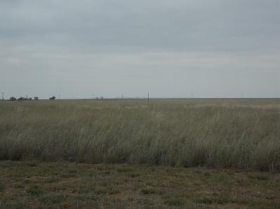 0 County Road 6400, Lubbock, TX 79343 - #: 201808525