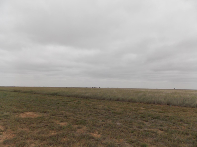 0 County Road 6400, Lubbock, TX 79343 - #: 201808558
