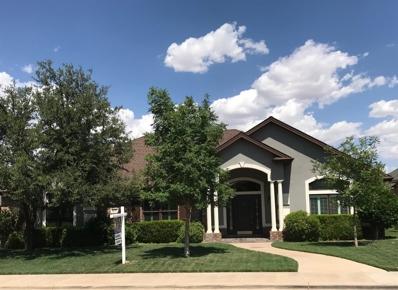 9803 Savannah Avenue, Lubbock, TX 79424 - #: 201904607