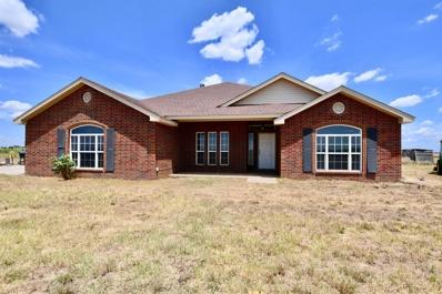 19907 Farm Road 2192, Slaton, TX 79364 - #: 201906434