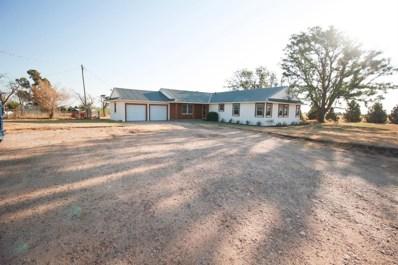 4223 E County Road 7900, Slaton, TX 79364 - #: 201906688