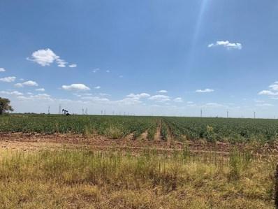 E Farm Road 40 Highway, Lubbock, TX 79403 - #: 201907793