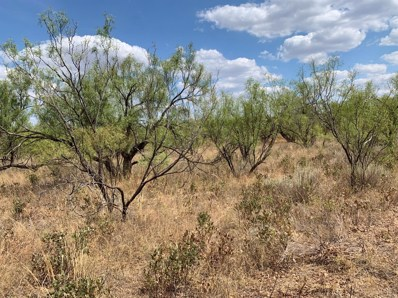 Farm Road 261, Spur, TX 79370 - #: 201908532