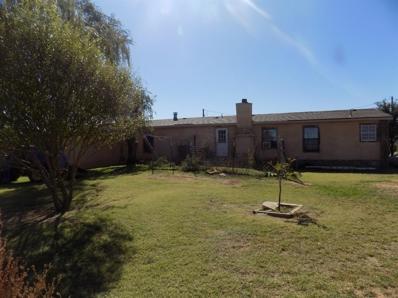 2306 Farm Road 1294, Lubbock, TX 79403 - #: 201909670