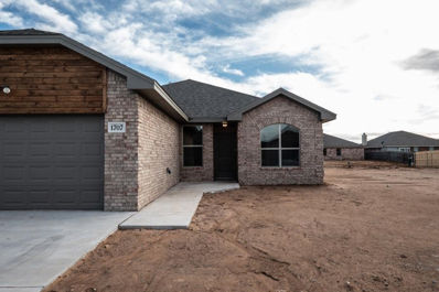 1707 99th Place, Lubbock, TX 79423 - #: 201910170