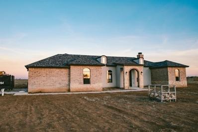 707 Farm Road 1730, New Home, TX 79373 - #: 202000517