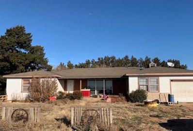 211 County Road 229, Hart, TX 79043 - #: 202002422