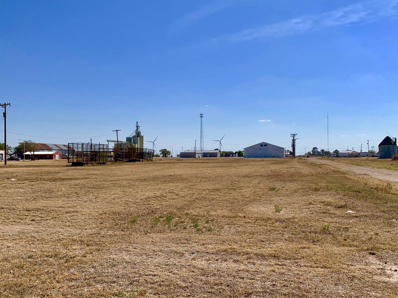 600 Ave G, Ralls, TX 79357 - #: 202010198