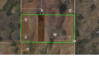 County Rd 415, Garden City, TX 79739 - #: 110210