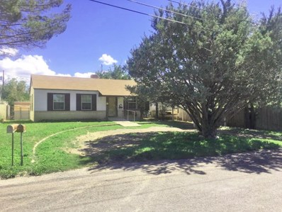 606 E Sul Ross, Alpine, TX 79830 - #: 110498
