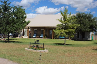 2601 SE County Rd 4391, Andrews, TX 79714 - #: 111027