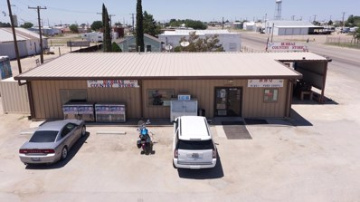 104 W Gulf Ave, Goldsmith, TX 79741 - #: 125274