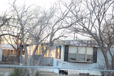 1210 Wright Drive, Big Spring, TX 79720 - #: 50013238