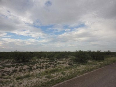 80 Acres Buena Vista, Imperial, TX 79743 - #: 50018093