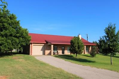 2341 Lcr 252, Colorado City Lake, TX 79512 - #: 50024074