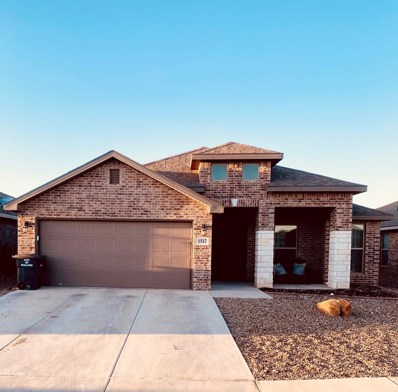 1517 Brand Lane, Midland, TX 79705 - #: 50028187