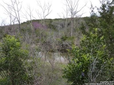 17032 Scenic Loop Road, Helotes, TX 78023 - #: 1227537