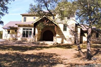 1313 Ensenada Dr, Canyon Lake, TX 78133 - #: 1289023