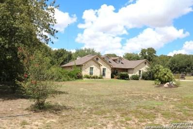 149 Rosewood Drive, La Vernia, TX 78121 - #: 1293606