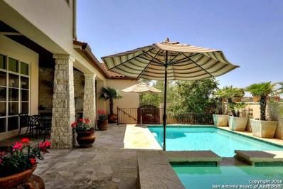 18 Winthrop Downs, San Antonio, TX 78257 - #: 1306168