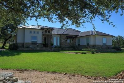 335 Lookout Ridge, New Braunfels, TX 78132 - #: 1308228