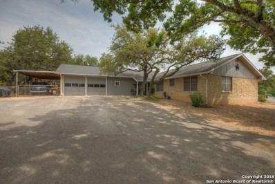 129 Outer Dr, Canyon Lake, TX 78133 - #: 1312182