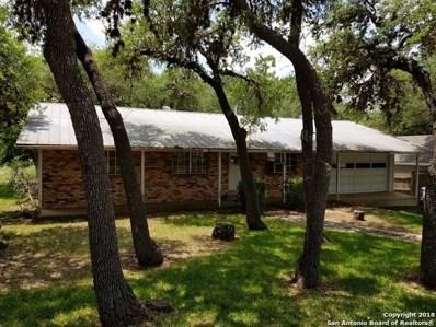 751 Valley Oaks Dr, Canyon Lake, TX 78133 - #: 1313269