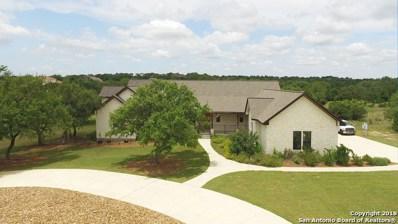 2645 Beaver Ln, New Braunfels, TX 78132 - #: 1313304