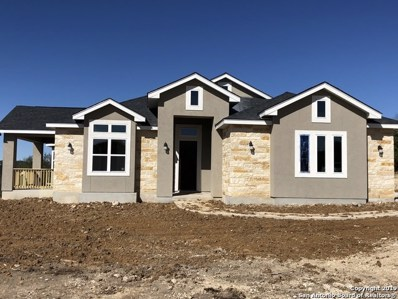 22793 Cranes Mill Rd, Spring Branch, TX 78070 - #: 1314356