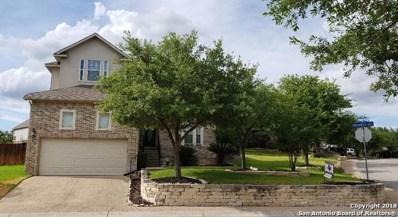 23503 Enchanted View, San Antonio, TX 78260 - #: 1315068