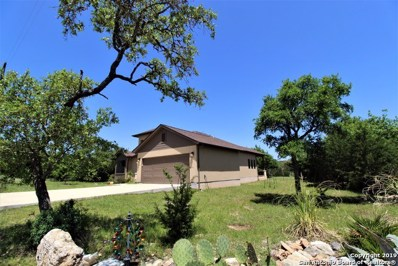 113 Eli Chandler, Blanco, TX 78606 - #: 1320477