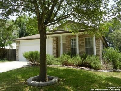 21402 Encino Lookout, San Antonio, TX 78259 - #: 1321438