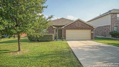 1250 Sandhill Crane, New Braunfels, TX 78130 - #: 1328295
