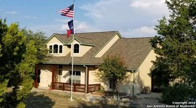 230 Ridge Point, Spring Branch, TX 78070 - #: 1329435