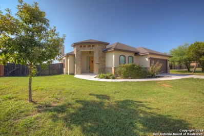 134 River Park Dr, New Braunfels, TX 78130 - #: 1330044