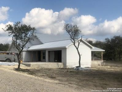 Privilege, Pipe Creek, TX 78063 - #: 1330683