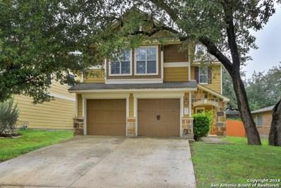 253 Horse Hill, Boerne, TX 78006 - #: 1331502